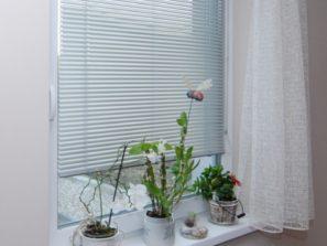 levné žaluzie do oken